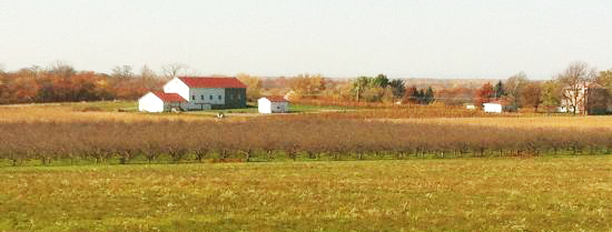 Niagara-County-Farmland